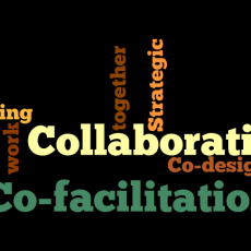 Co-facilitation and Collaboration: working with colleagues is great.
