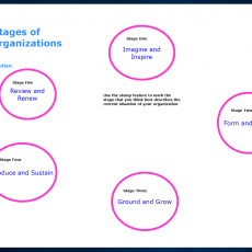 Virtual Idea 2: Exploring the 5 life stages of a nonprofit organization online